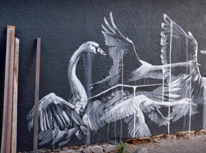 Изображения лебедей от Faith47.