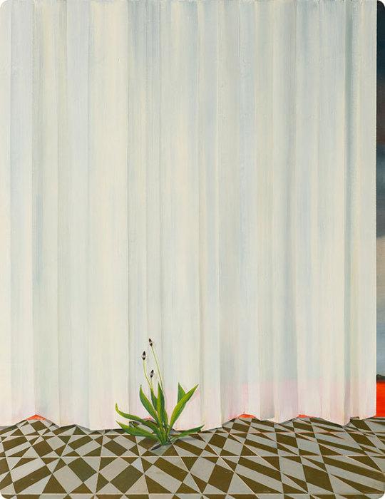 Небольшой росток на фоне белых штор в работе Мари Роузен (Marie Rosen).