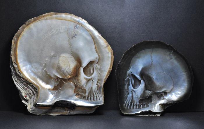Оригинальные изображения черепов на ракушках.
