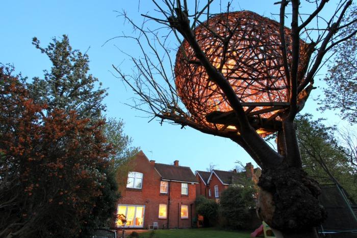 Яйцевидный домик на дереве, оснащенный подсветкой.