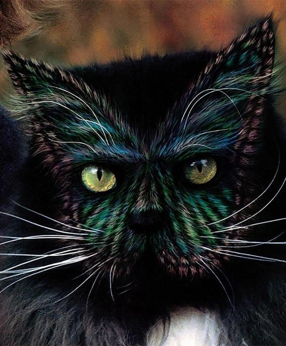 Кэтпейнтинг - раскрашивание кошек.