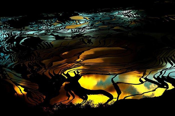 Чарующие рисовые поля Китая.