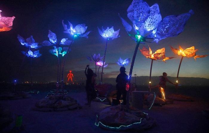 Арт-инсталляция «Пульс и Цветение».
