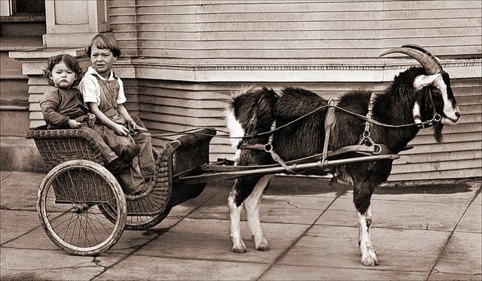 Винтажная коляска для детей. | Фото: april-knows.ru.