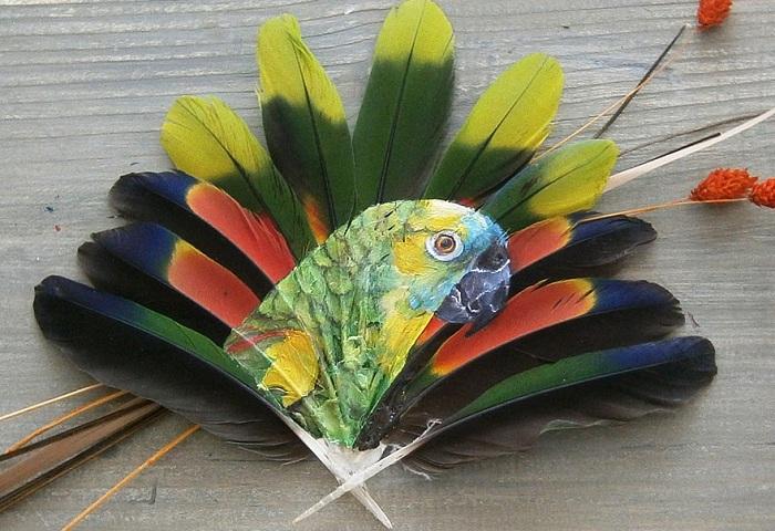 Перья попугаев, используемые в качестве холста.