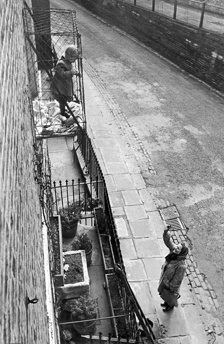 Девочка гуляет в клетке снаружи своего дома.
