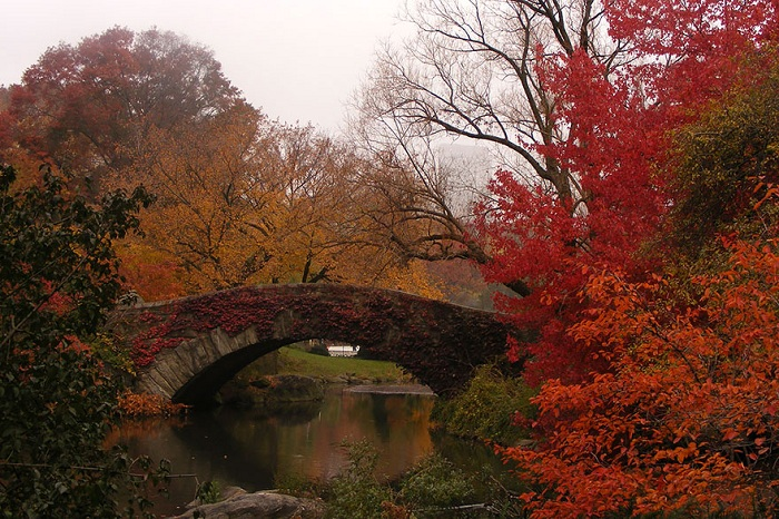 Мост в Центральном парке Нью-Йорка (США). Осенний пейзаж.