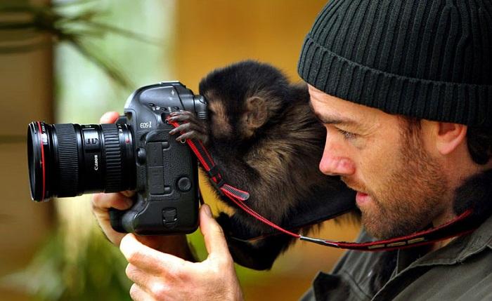 Забавный снимок фотографа и обезьянки.