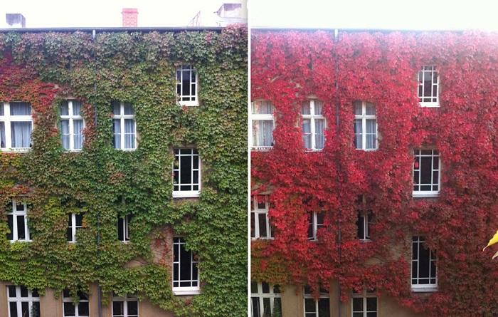 Фасад здания в разные времена года.
