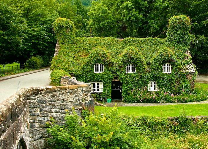 Дом - Tea house (North Wales). Лето