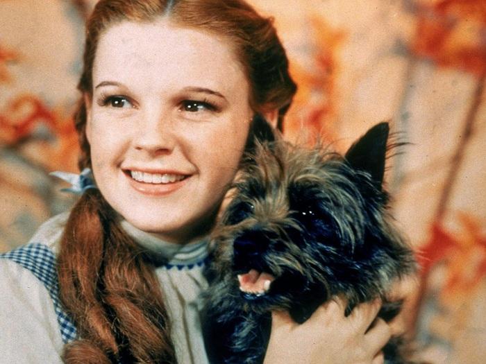 Джуди Гарленд в роли Дороти из к/ф «Волшебник страны Оз». | Фото: media4.s-nbcnews.com.