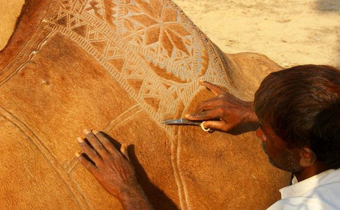 Мастер выстригает орнамент верблюду обычными ножницами.