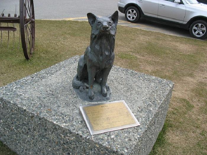Памятник Балто в городе Палмер на Аляске. | Фото: thevintagenews.com.