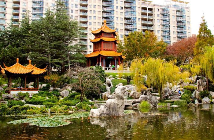 Китайский сад дружбы, Сидней, Австралия. | Фото: fiveminutehistory.com.