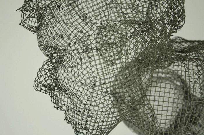 Голова, сделанная из сетки.