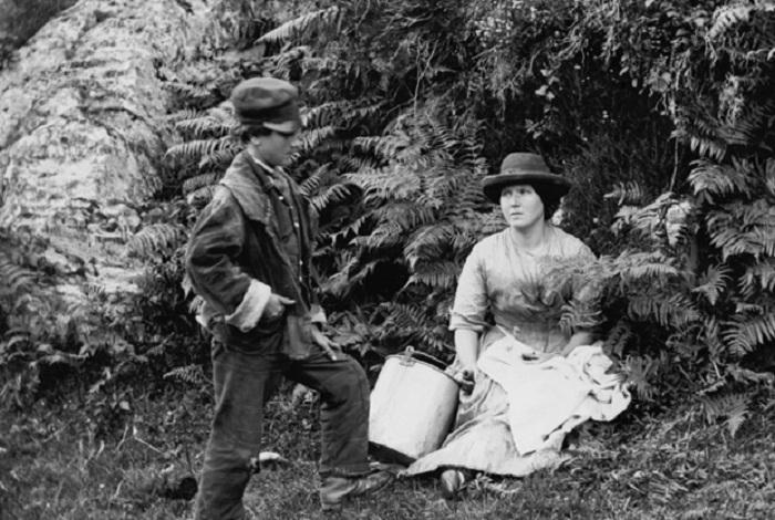 В викторианскую эпоху было популярным изучение папоротников. | Фото: mentalfloss.com.