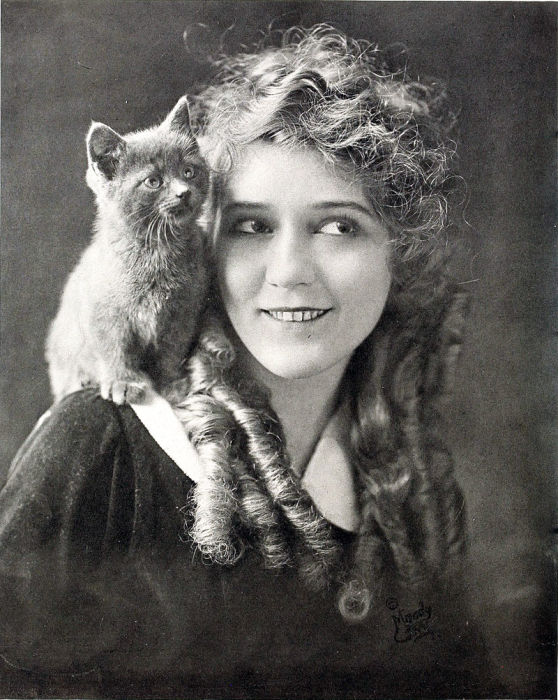 Мэри Пикфорд - голливудская актриса, 1916 год. | Фото: en.wikipedia.org.