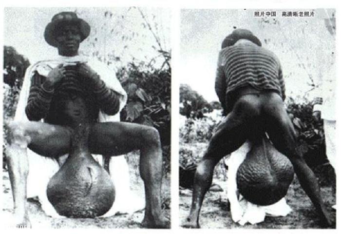 Нравятся ли девушкам мужчины с большими яичками фото 294-658