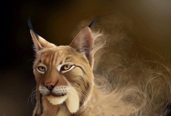 «Иберийская рысь». Картина, нарисованная на планшете.