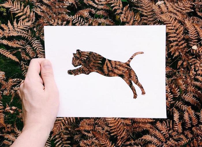 Творчество матушки природы картинки
