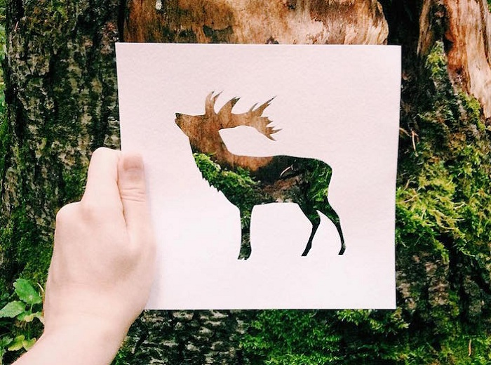 Двухмерная композиция из бумаги на фоне природного пейзажа.