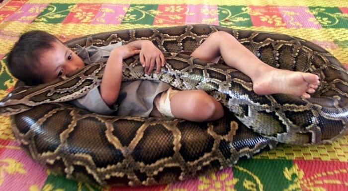 5-метровый питон - лучший друг для мальчика. | Фото: momentsjournal.com.