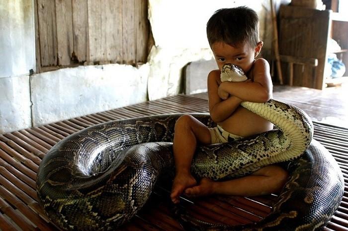 Удивительная дружба мальчика и питона. | Фото: momentsjournal.com.