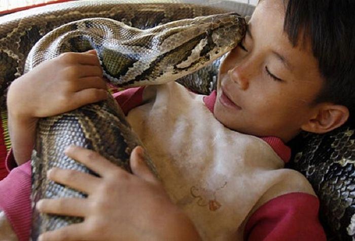 Уорн Самбат и питон Чамреун вместе спят. | Фото: momentsjournal.com.