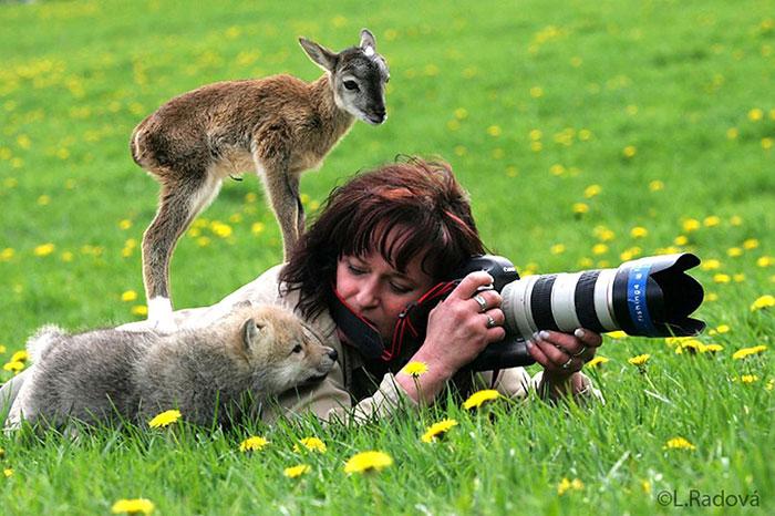 Трогательный снимок со зверюшками.