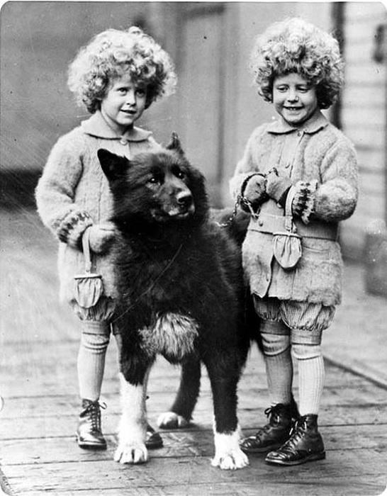 Балто с детьми, спасенными от дифтерии. | Фото: 4tololo.ru.