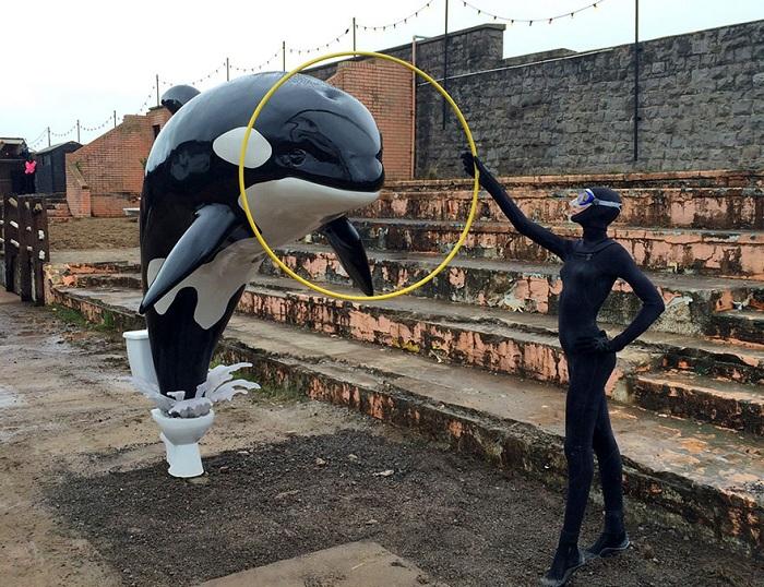 Инсталляция: Дельфин, выныривающий из унитаза.