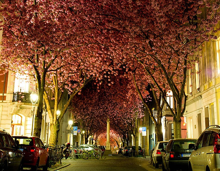 Bonn, Germany.