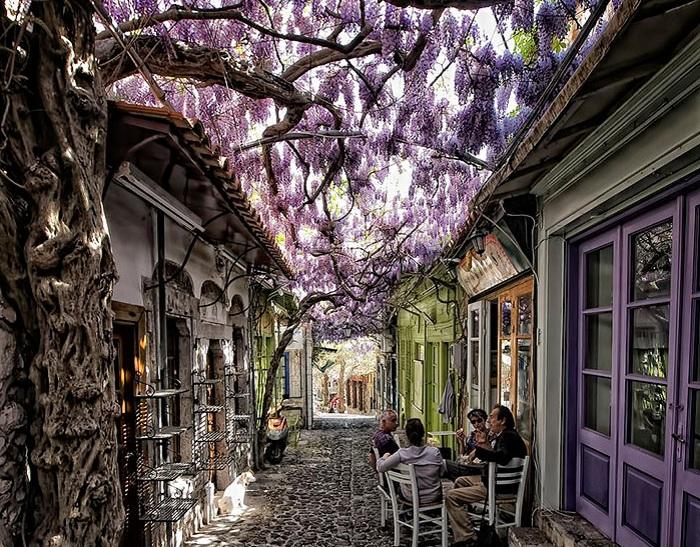 Мolyvos, Greece.