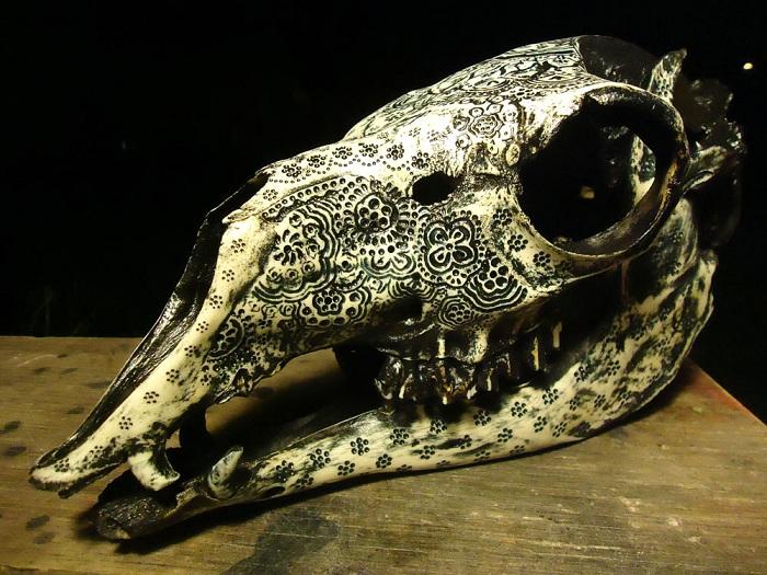 Орнамент, нанесенный на череп животного.