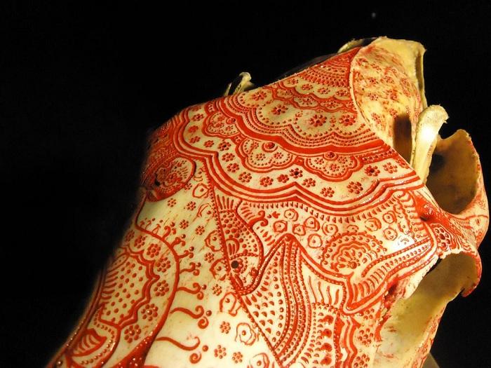 Рисунки на кости, выполненные Jason Borders.