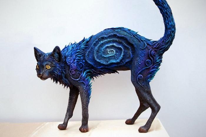 Galaxy Cat � ������� �� ���������� �����.