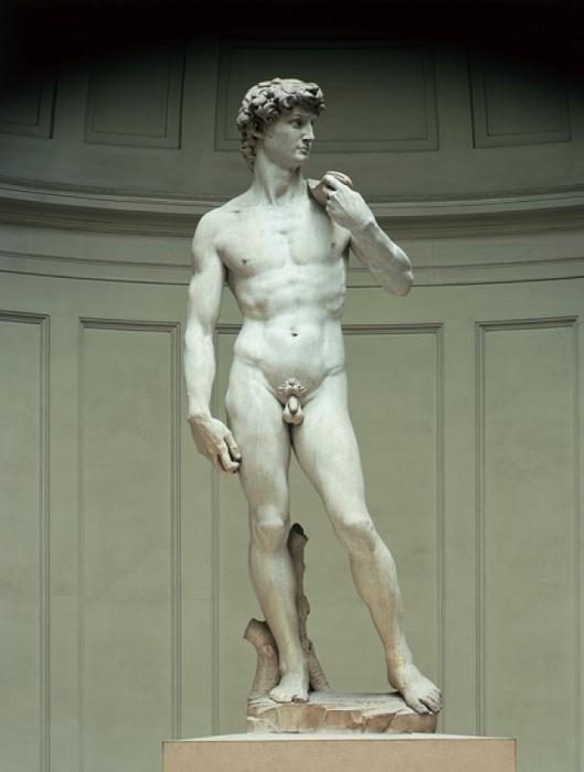 «Давид». Микеланджело Буанаротти, 1501-1504 гг. | Фото: classconnection.s3.amazonaws.com.