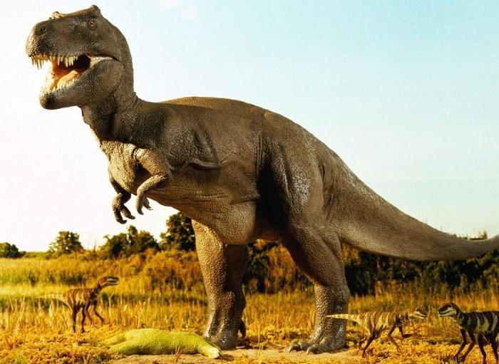 Тираннозавр рекс. | Фото: altfast.ru.