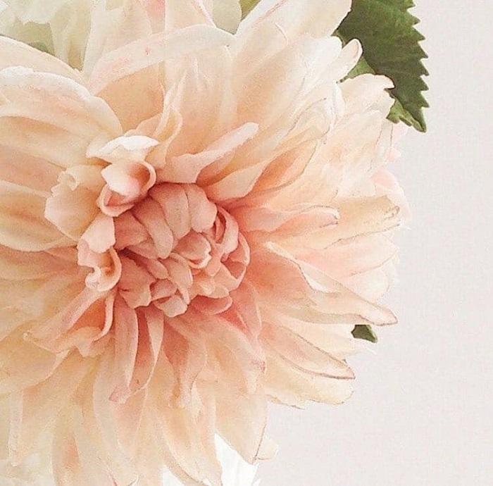 Хризантема - шедевр кондитерского искусства. | Фото: mymodernmet.com.