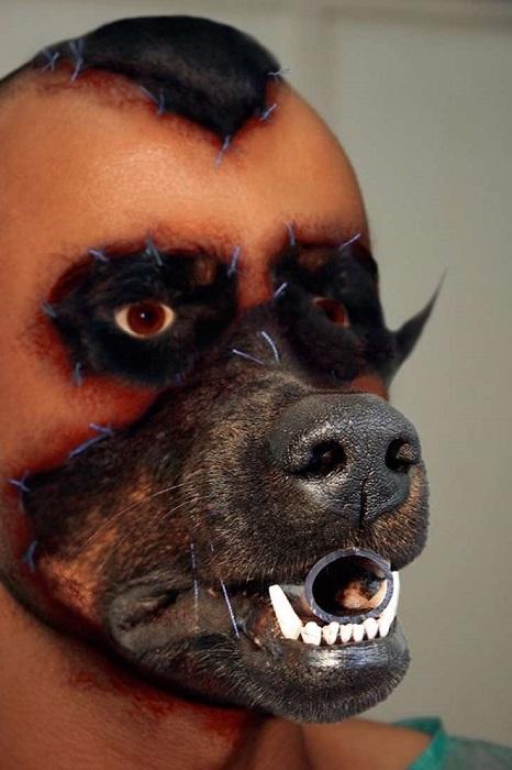 Завершающий этап - морда собаки. | Фото: fm105.com.mx.