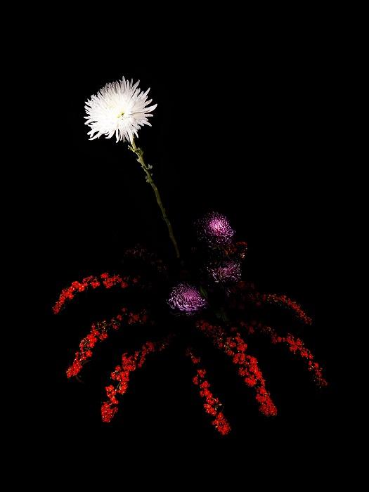 Цветочная композиция, напоминающая фейерверк.
