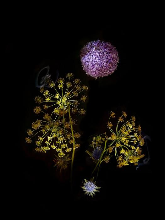 Flowerwork - работа Сары Илленберг.
