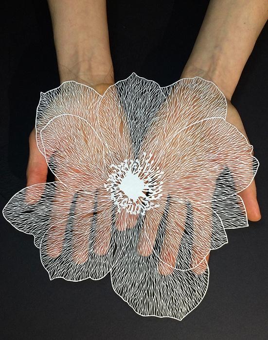 Цветок, вырезанный из бумаги.