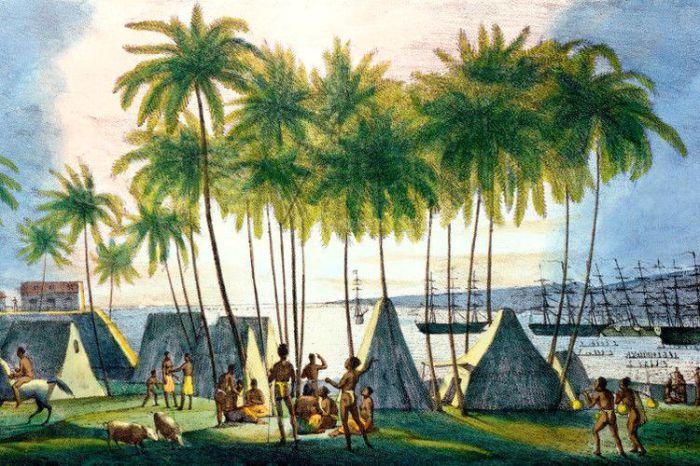 Остров Каукаи на Гавайях в 1815 году был российской колонией. | Фото: lemur59.ru.
