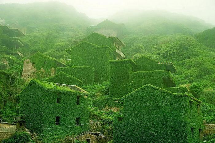 Деревня-призрак, затянутая зеленым плющом.