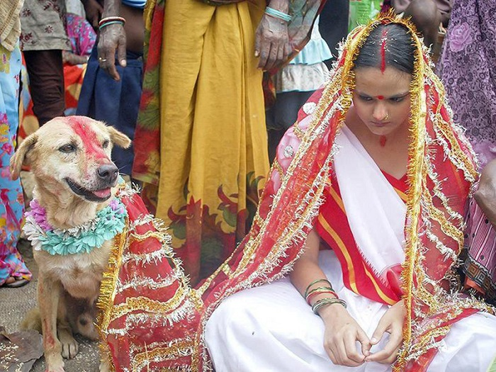 Индианка выходит замуж за пса. | Фото: ulu.az.