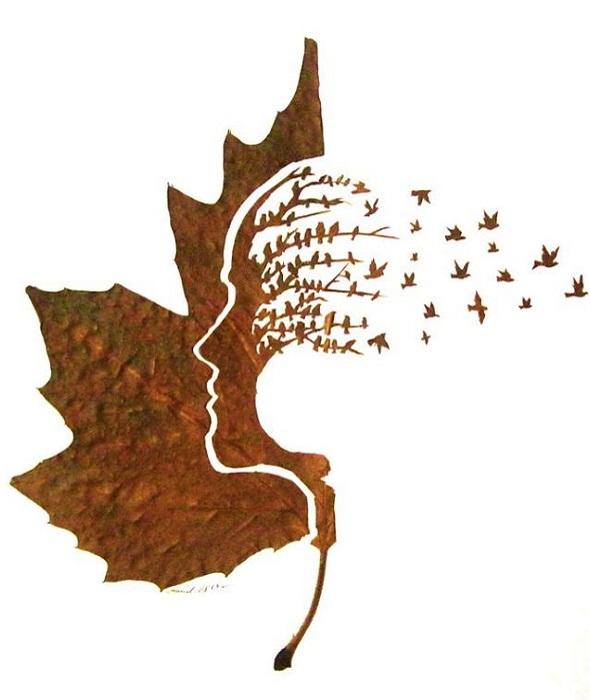 Узор, вырезанный на сухом листе.