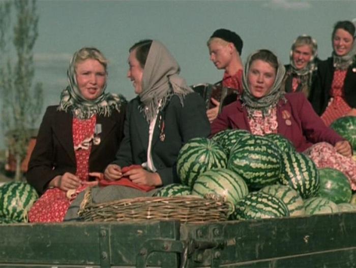 Кадр из к/ф «Кубанские казаки» (1949). | Фото: ochupella.ru.
