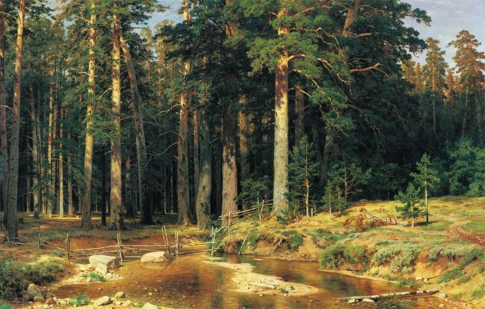 Корабельная роща. И. Шишкин. 1898. | Фото: allpainters.ru.