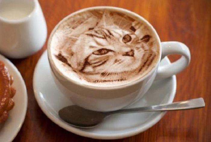 Изображение кошки на кофейной пене.